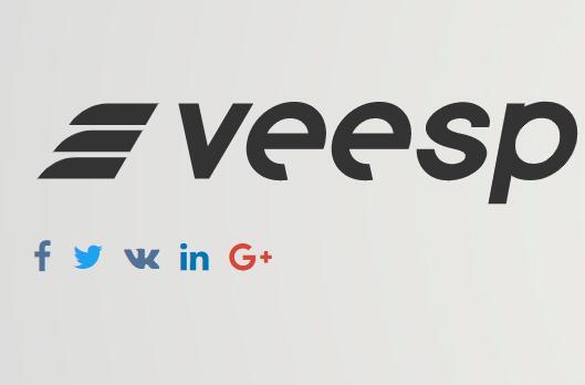 #优惠#Veesp – 俄罗斯VPS双核1G+200Mbps不限流量月付3美元插图