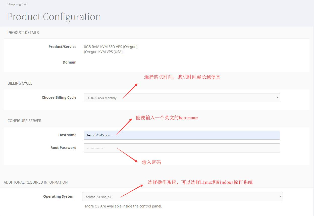 Host4Fun 美国VPS、新加坡VPS新手购买教程插图2