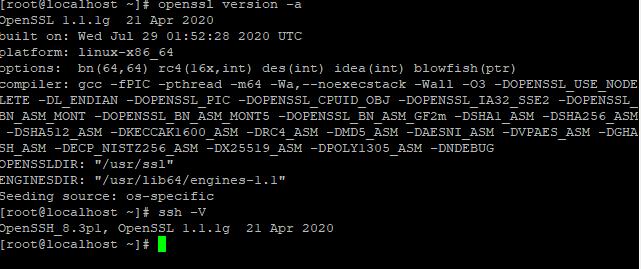 部署https后访问提存在安全隐患NET::ERR_SSL_OBSOLETE_VERSION插图1
